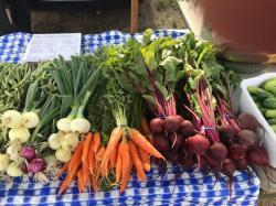 Hibbing Farmers Market